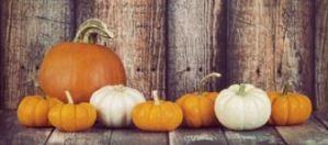 fall-pumpkins-1